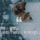 greenpeace_2019-02